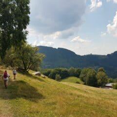 pad boven berghut sentiero delle espressioni
